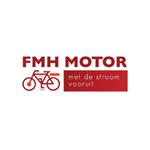 FHM-accu-revisie