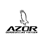 azorbike-accu-revisie