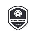brinckers-accu-revisie